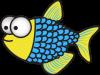 Finley the Fish | Warehouse Aquatics